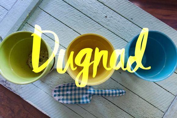 dugnad-2016-04-27