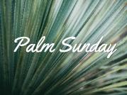 50338_Palm_Sunday